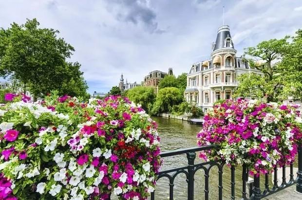 荷兰开放5年签证啦,这是一个令人陶醉的国度。